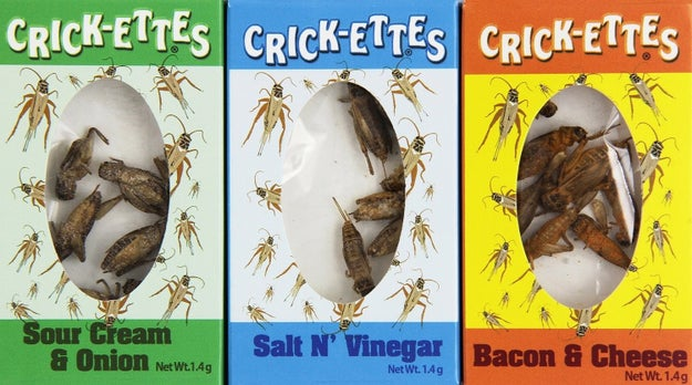 Some flavored crickets to help satisfy those cricket cravings that just won't quit.
