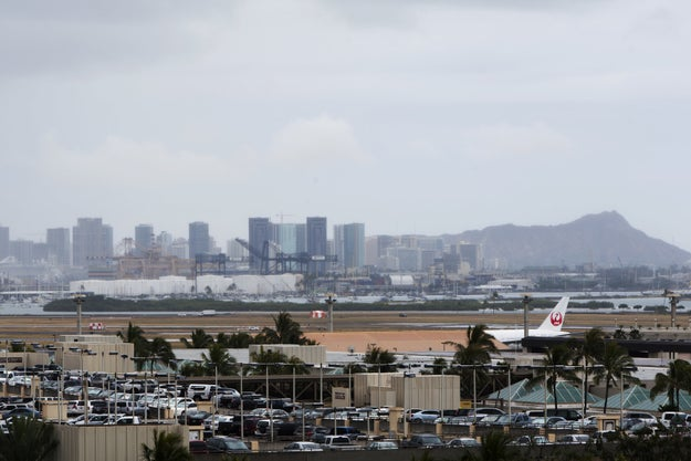 A security officer shot and killed a pet dog at the Honolulu International Airport on Tuesday, sparking an investigation.