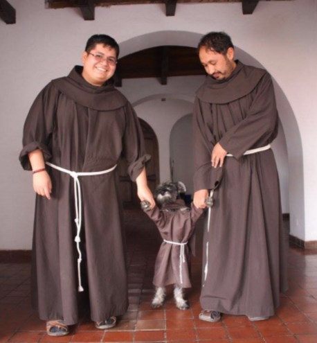 This pup who has been adopted into the monastery.