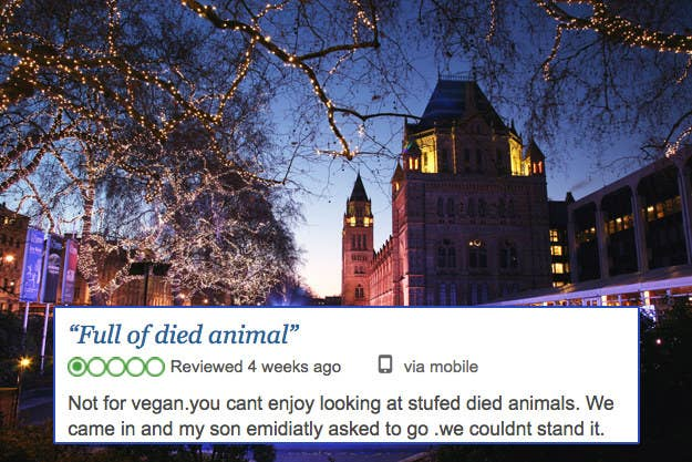 16 Of The Most Ridiculous Tripadvisor Reviews About London