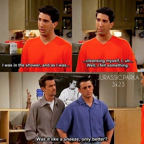 Ross: I was in the shower, and as I was...cleansing myself, I, uh...well, I felt something.Chandler: Was it like a sneeze only better?Suggested by emilyw4581385ba