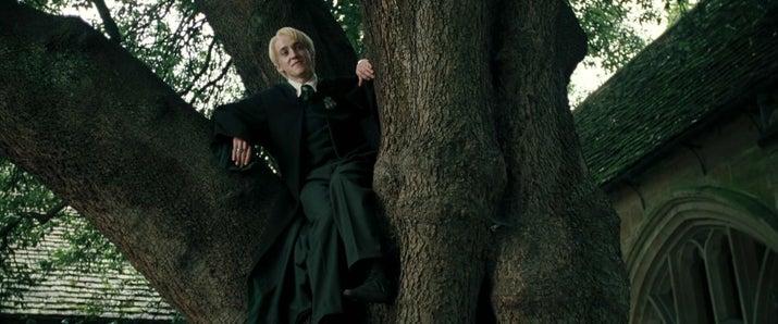 'Ese momento en El cáliz de fuego en el que Draco Malfoy se sentaba en un árbol mientras estaba con sus amigos y ellos estaban de pie en el suelo. Es como: hombre, ¿qué demonios estás haciendo en ese árbol? Me hace reír cada vez que veo la película'. —michelleth