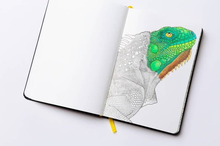 5 Fantastic Coloring Books For Adults