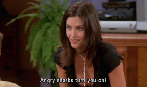 """""""When Monica thought Chandler was masturbating to a shark documentary? Why the hell would that be your first thought?""""–Michael J Ritchie, Facebook"""