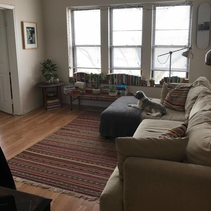 Chicago Craigslist Apartments: Here's What $1,000 A Month In Rent Will Get You In All 50