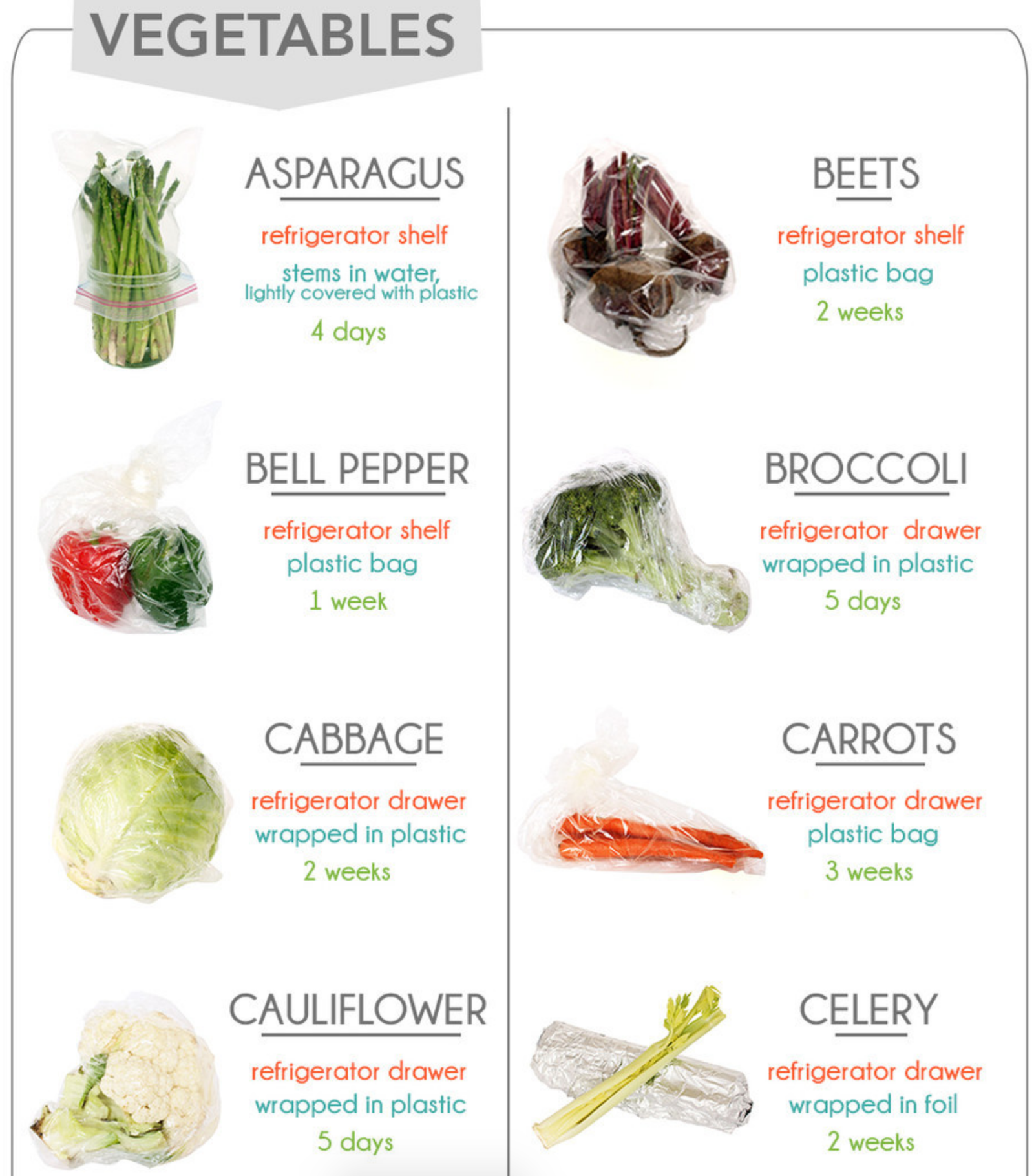 17 Cheat Sheets If You're Vegetarian Or Vegan