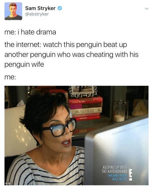 25+ Drama Free Life Meme Gif