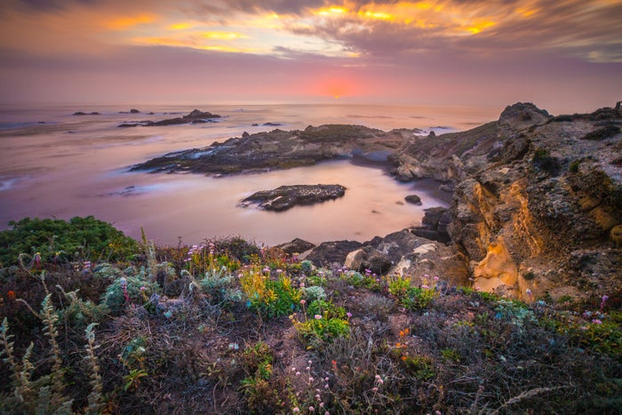 Favorite getaway in California is Point Lobos, Carmel. The hike is breathtaking, the trail comes with most jaw-dropping views and sightings. —margaritas438e85f2a