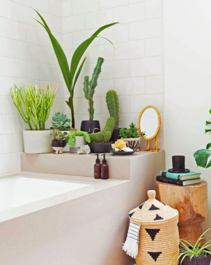 Definiely keep some fancy-ass plants in your bathroom to keep the air fresh and your space green.