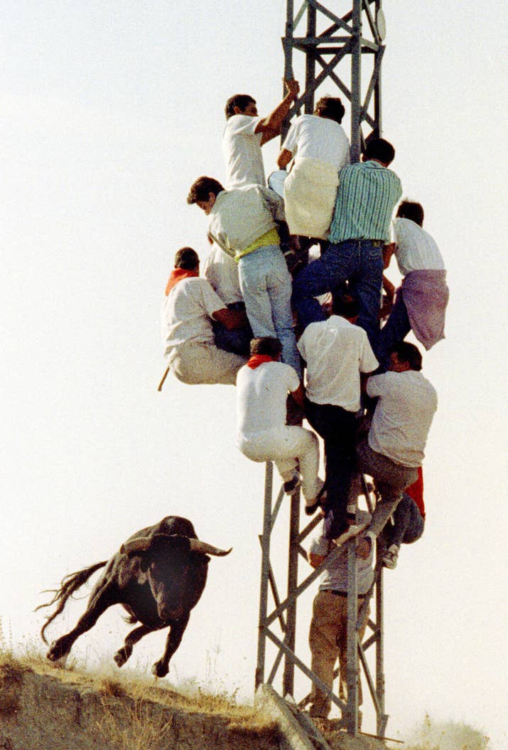 Varios espectadores se suben a una torre eléctrica para huir de un toro que se escapó antes del encierro de Cuéllar el 12 de septiembre de 1990.