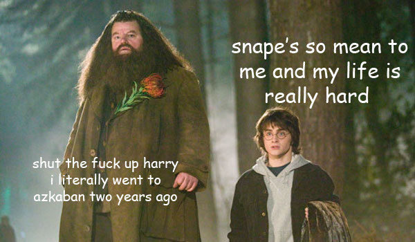 Also, he pretty much ignored Hagrid throughout the series, except when he needed something.