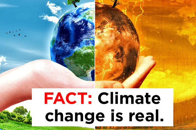 """changing the world through global warming The power of gary braasch's personal witness to the climate crisis makes this  essential reading for every citizen—al gore """"earth under fire is an important."""