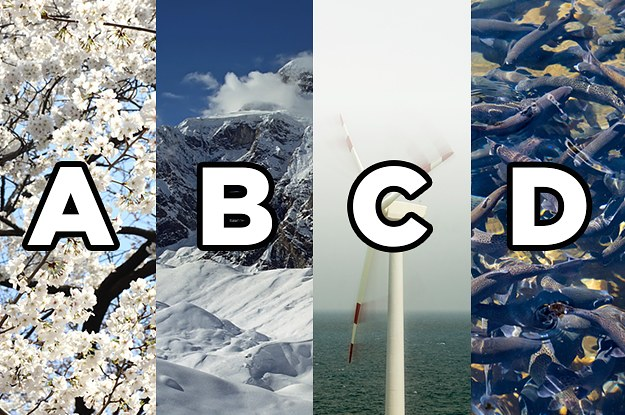 This Word Association Test Will Reveal If Your Personality Is Type A, B, C, Or D