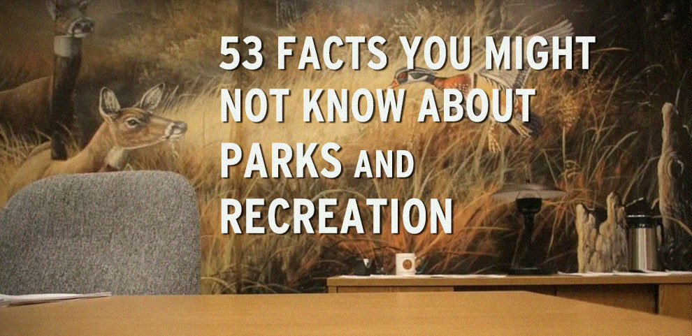 "53 Facts You Might Not Know About ""Parks And Recreation"""