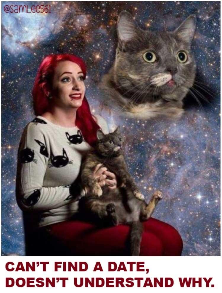 sub buzz 13442 1493213514 1?downsize=715 *&output format=auto&output quality=auto crazy cat lady meme
