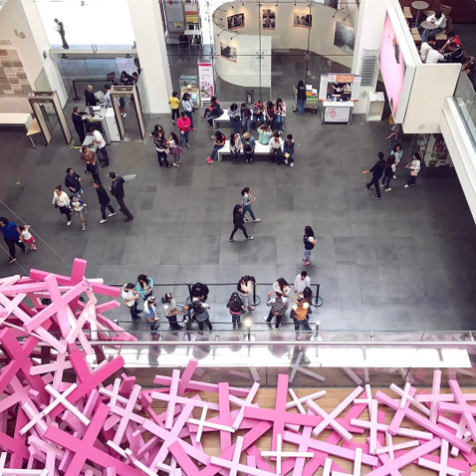 """Actualmente, tienen la exposición """"Feminicidio en México. ¡Ya basta!"""", que busca crear conciencia sobre la violencia contra las mujeres y las niñas en nuestro país."""