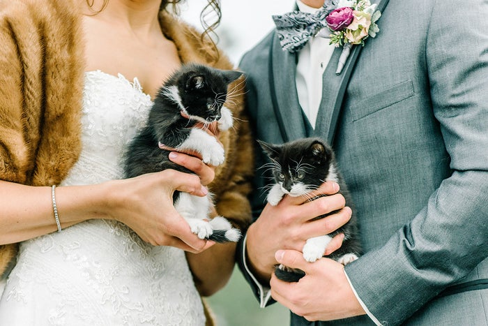 The couple brought along the felines, named Jeeves and Houdini, to promote Divine Feline, a Colorado-based animal rescue agency where they volunteer regularly, their photographer Autumn Cutaia told BuzzFeed.