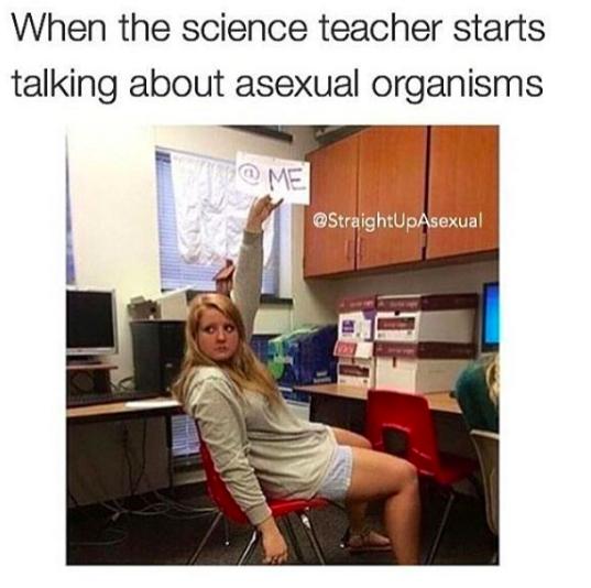 Dating a teacher buzzfeed