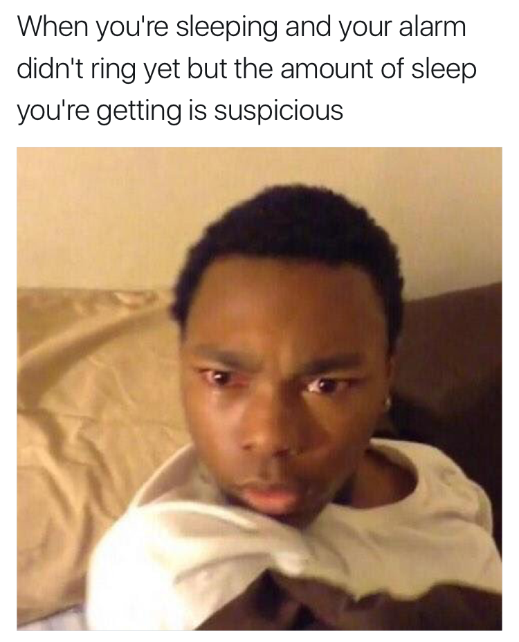 sub buzz 18850 1491499447 6?downsize=715 *&output format=auto&output quality=auto 55 hilarious memes for anyone who just loves sleep,Hilarious Memes Pictures