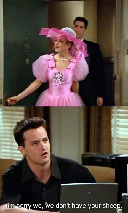 Chandler: I'm sorry we, we don't have your sheep.Suggested by christopherw4bd6e6b53