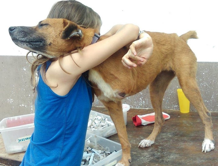 Los animalitos tampoco se salvan de esta fuerte crisis política, económica y humanitaria por la que atraviesa Venezuela y, lamentablemente, cada día son más las mascotas abandonadas. Además, están siendo fuertemente perjudicadas por las bombas lacrimógenas y disparos arrojados por fuerzas militares en estos tiempos de protesta.La misión principal de Santuario Luna es ayudar a los perros y gatos que viven en la calle, darles atención veterinaria, alimentarlos y estabilizarlos para luego buscarles un hogar (si no logran encontrarlo, los atienden por siempre). Cualquier aporte (medicinal, alimenticio y productos para mascotas) es bien recibido. Además tienen cuentas en el Banco Bicentenario y Bank of America.Evita que los animalitos sufran en las calles en estos momentos de represión policial.Sitio Web: http://fundacionsantuarioluna.comInstagram: @SantuariolunaFacebook: SantuarioLuna