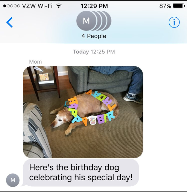 """On Thursday, it was Carson's 12th(!) birthday. Of course, Buechele's mom texted the fam to share photos of the celebration. """"Here's the birthday dog celebrating his special day!"""""""