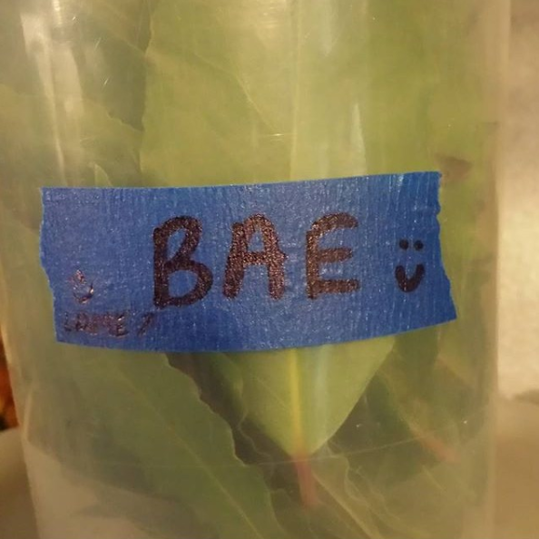 17 Kitchen Tape Fails That Will Make Any Restaurant Worker LOL
