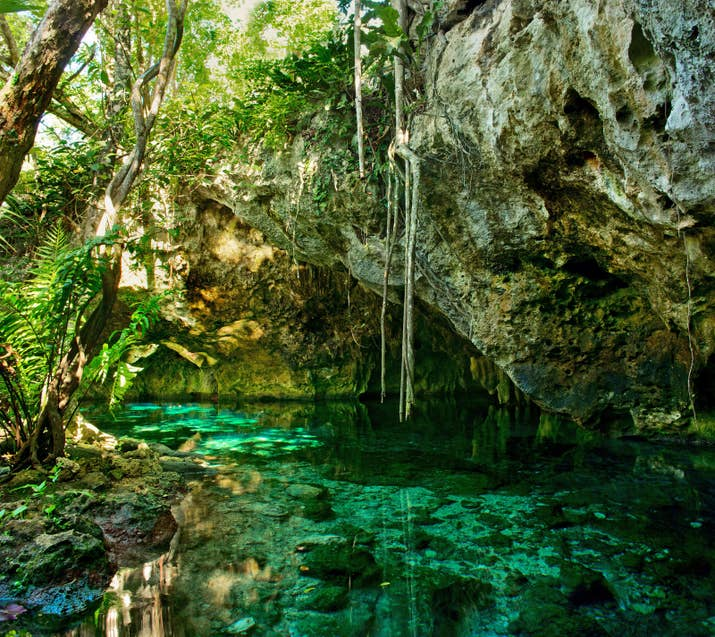 —gouwensdThese turquoise, underground caves are hidden deep in the jungles all over the Yucatán Peninsula from Cancún to Cozumel.