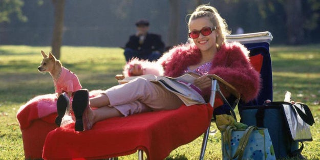 And this is Elle Woods of Legally Blonde, arguably one of the smartest people to ever graduate from Harvard Law School.
