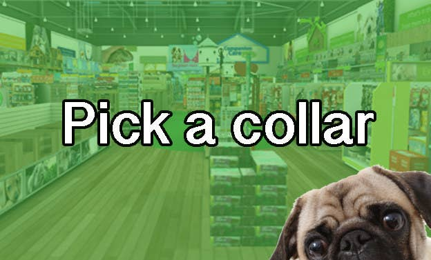 We'll Tell You What Breed Of Dog To Adopt, But First, Go