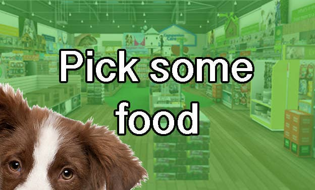 We'll Tell You What Breed Of Dog To Adopt, But First, Go Shopping