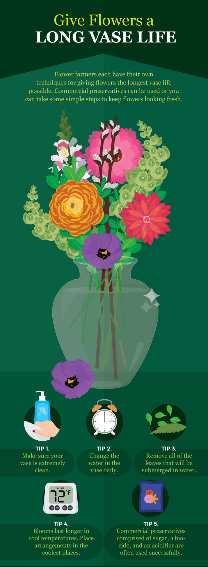 Flowers in vase change water - Once They Re In The Vase Here S How To Help Them Live Longer