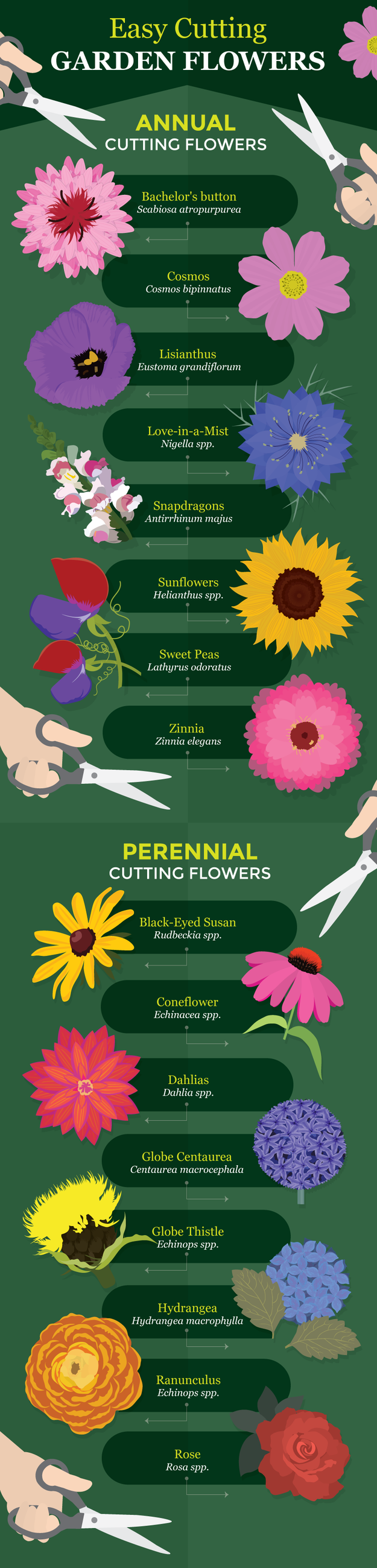 Here's which flowers look best in bouquets:
