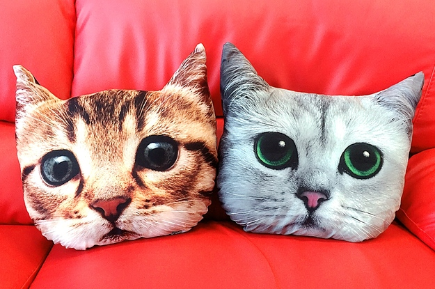 This Cat Pillow Is Kind Of The Cutest Thing Ever
