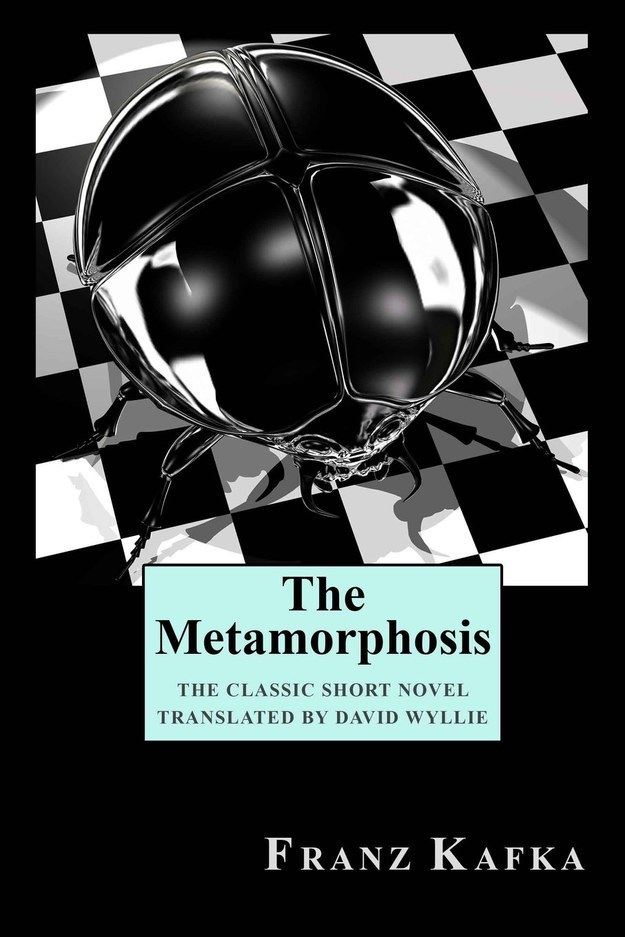 a summary of franz kafkas metamorphosis The writings of franz kafka have long been a template for modern awareness even so, kafka's writing style can be described as tough the metamorphosis, a disturbing, yet humorous short story is in a class of its own the writings of franz kafka have long been.