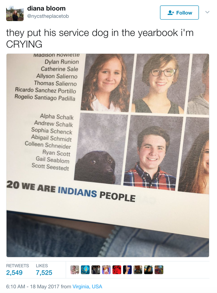 """""""Seeing a picture of a dog caught my eye pretty quickly,"""" Bloom told BuzzFeed News. """"I thought it was so cute, and I knew that some of my underclassmen friends hadn't seen it yet because they didn't have their yearbooks, so I took a picture and tweeted it.""""Her tweet has since been retweeted more than 2,500 times."""