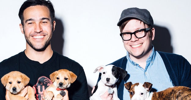 It Turns Out Pete Wentz Has Never Talked To Bruno Mars ...