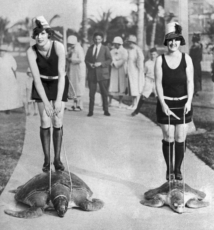 Animal cruelty was clearly not a thing back then.