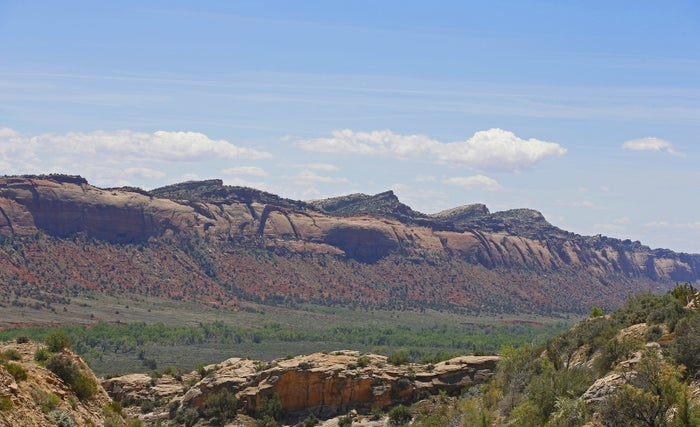 A long wall of stone formations in the Bears Ears National Monument.