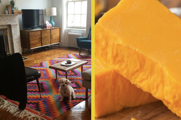 Build The Perfect Apartment And We'll Tell You What Sort Of Cheese You Are