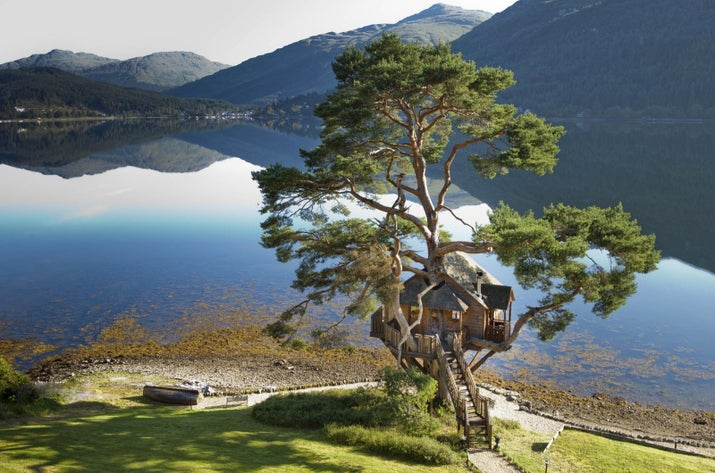 Insane Tree Houses 7 insane scottish tree houses that look like something out of a