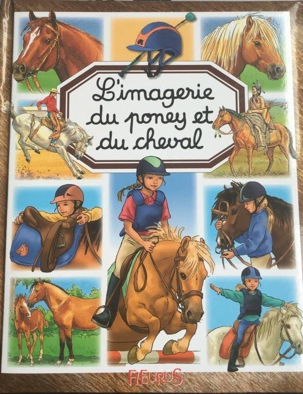 caballo libro