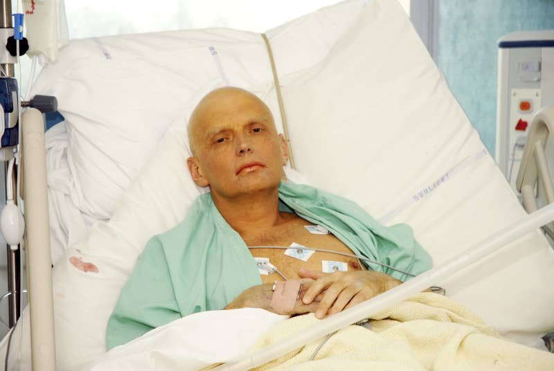 Alexander Litvinenko on his deathbed