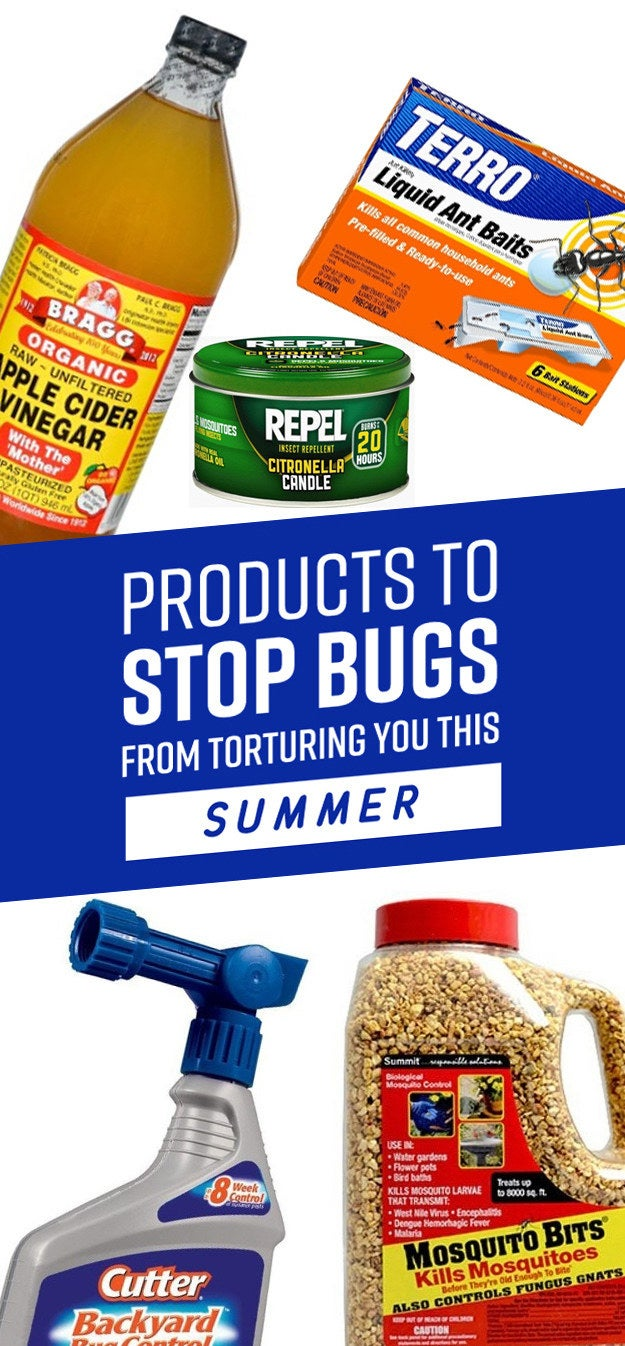 16 things that u0027ll stop bugs from torturing you this summer