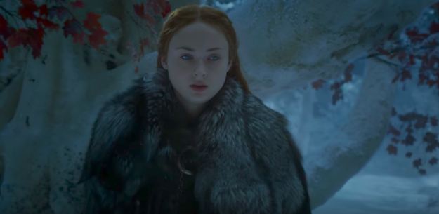 "The trailer starts off with Sansa Stark walking through the Godswood at Winterfell, amid an ominous voiceover by Littlefinger talking about fighting ""everywhere,"" not just in the north and the south."
