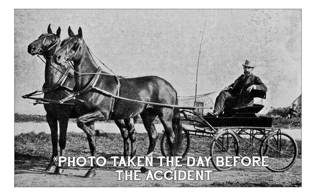 TRAGEDY STRIKES: It's the 1920s and your great grandfather, Alonzo Hammermeister, was just run over and killed by a horse and buggy. You go to collect your inheritance and learn that you're entitled to a whopping $5.