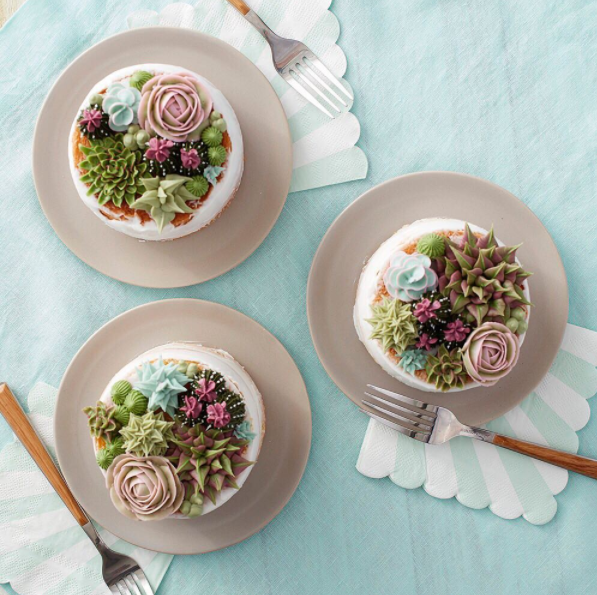 One succulent cake for you, and one for you, and one for you.