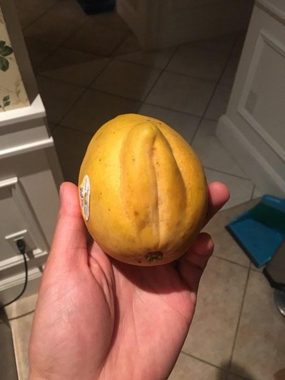 A mango with bulging folds on one side