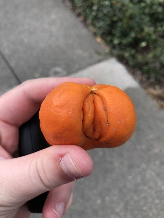 A tangerine with a folded part on one side