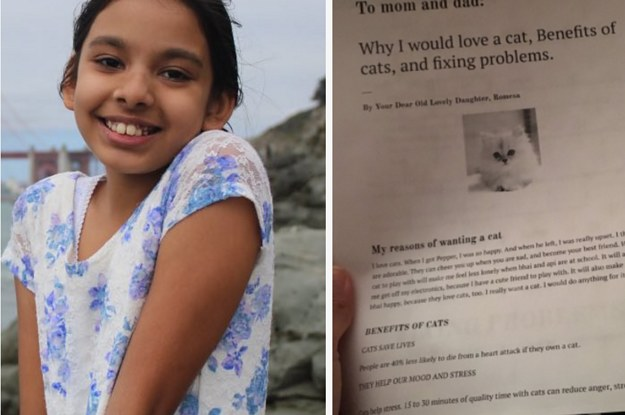 This 11-Year-Old Wrote Her Parents A 6-Page Report On Why She Needs A Cat And Everyone Is Rooting For Her